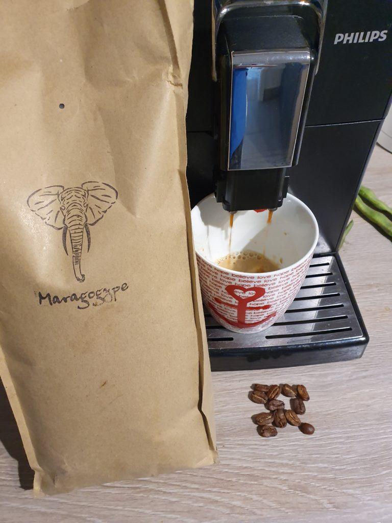 Maragogype von Kaffeekumpeln.de